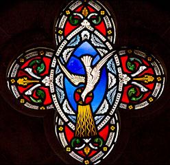 stainedglass-dove
